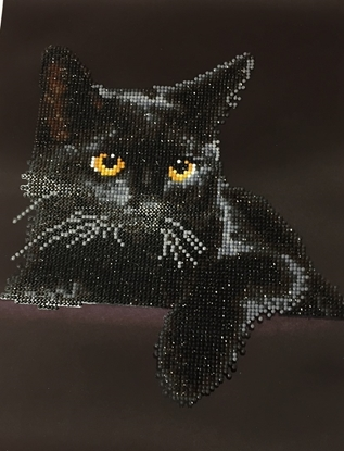 Picture of Diamond Painting: Midnight Cat.