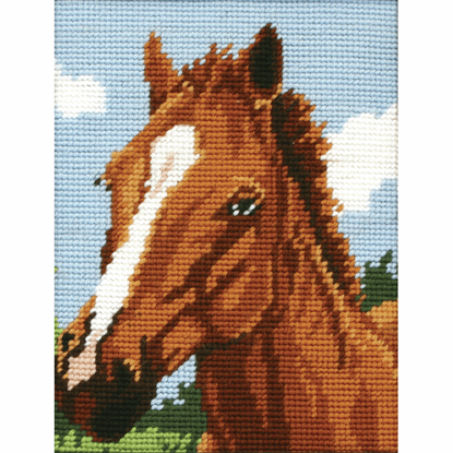 Picture of Starter Tapestry Kit Horse